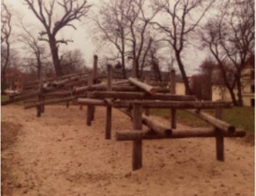 Pubertierend auf dem Spielplatz  – von Paola Mester